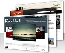 memilih wordpress theme