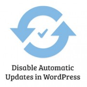 nonaktifkan auto update wordpress