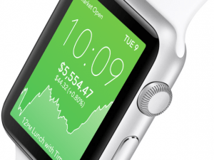 acorns apple watch