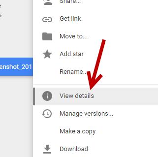 view details di google drive